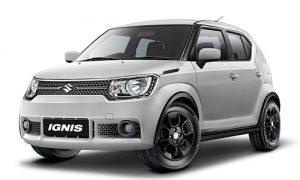 ignis-grey-white